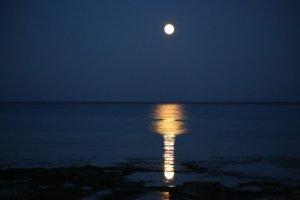 新月満月占い